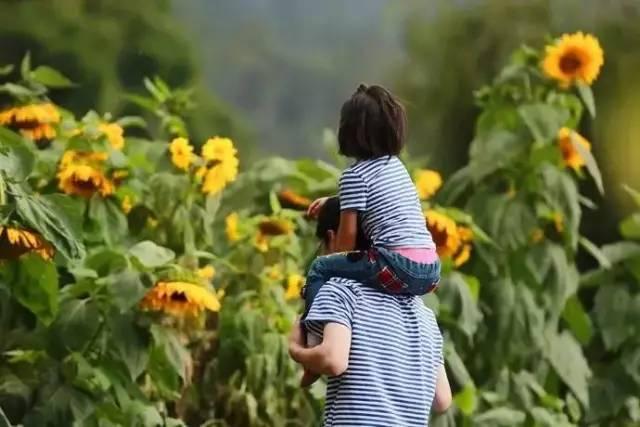 父亲节 | 爸爸去哪儿?带上孩子到百果山尽情嗨!