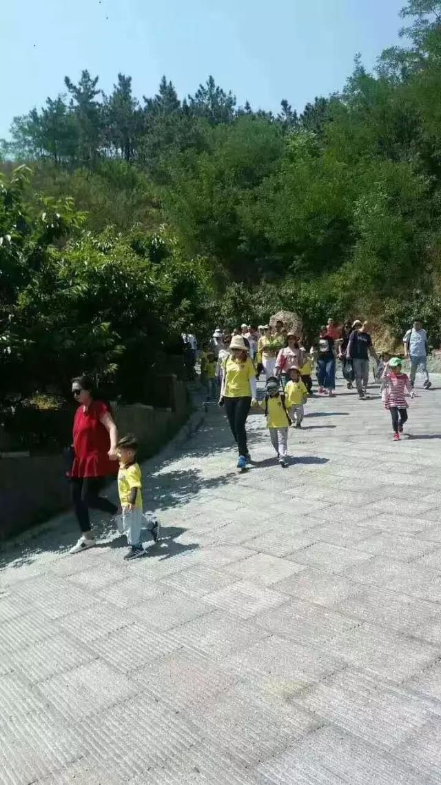 童心幼儿园小朋友们在百果山拥抱大自然!